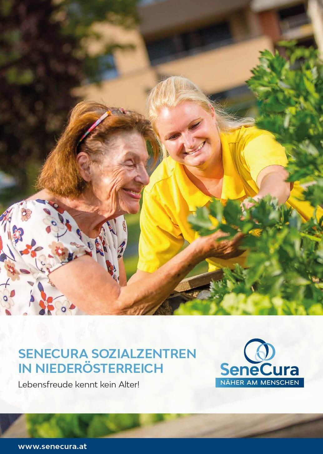 https://www.senecura.at/wp-content/uploads/2019/05/SeneCura_Regionenfolder_Niederösterreich.jpeg